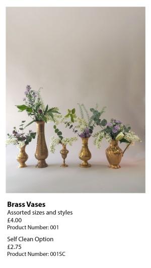 Brass Vases 001
